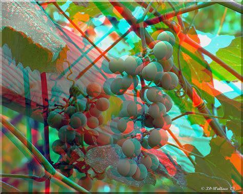 videos imagenes en 3d megapost imagenes 3d gafas rojas y azules taringa