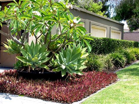 Pinterest Garden Ideas Uk Garden Ideas Uk On Pinterest Small Design Gardens Ifmore And Landscape For Spaces Best Home