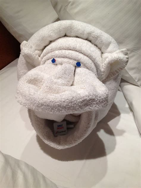 Towel Origami Animals - 1000 ideas about towel animals on towel