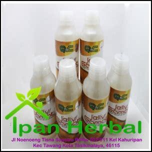 Obat Maag Ramuan Herbal obat herbal maag kronis mujarab pengobatan tradisional