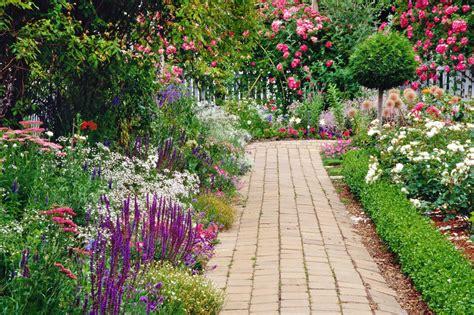 grow  summer flowers      garden