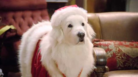 Santa Search Santa Paws Disney Wiki