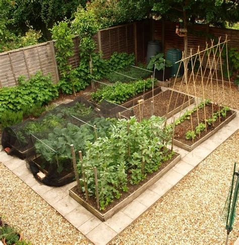 best 25 small space gardening ideas only on