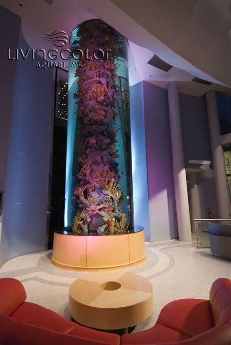 aquarium design jobs 163 best images about aquarium on pinterest