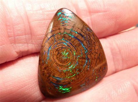 Fosil Kayu Opalized Wood by Opalized Wood Metallic Greens