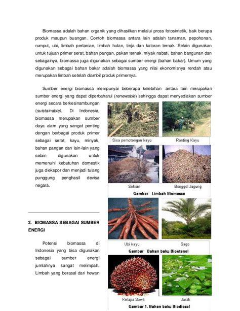 contoh biomassa biomassa