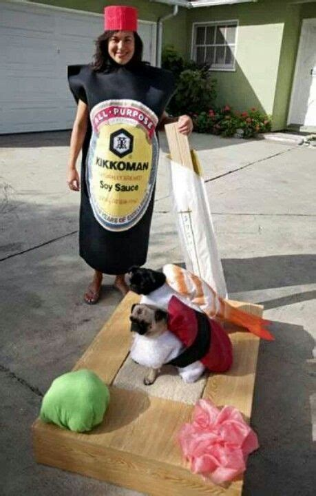pug costume for humans pug sushi best human and costume animal funnies
