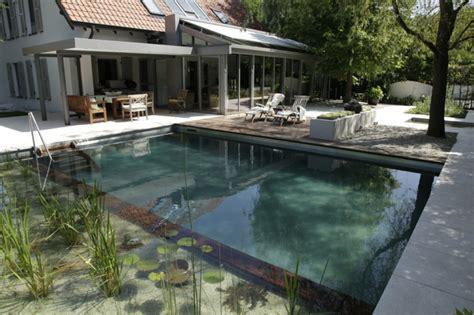 würmer im pool was tun gartenteich im pool anlegen eine umweltfreundliche idee