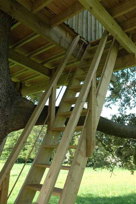 ships ladder access  adult treehouse building