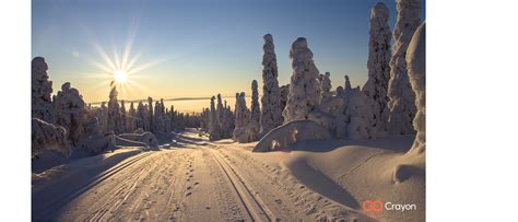 winter  holiday backgrounds  microsoft teams