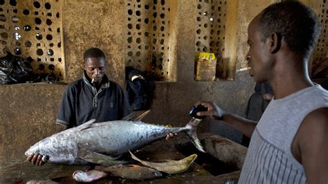 Lu Stop Carry 10 Pv10 olumide fafore s photos illegal overfishing and the return of somalia s