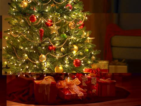 christmas tree background wallpapersafari