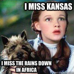 Dorothy Meme - toto africa dorothy meme funny pinterest