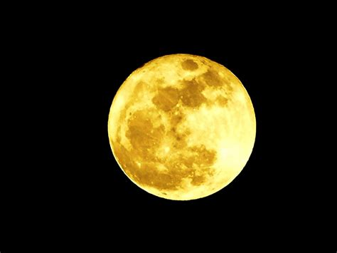 neural misfires  perigee moon  march