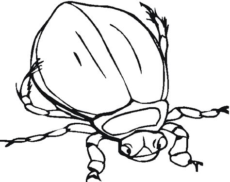 jungle insects coloring pages bug coloring pages 2 coloring page