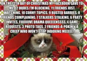 Grumpy Cat Christmas Meme - caturday blogging grumpy cat christmas card anibundel