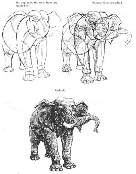 The Art of Animal Drawing by Ken Hultgren   AnatoRef