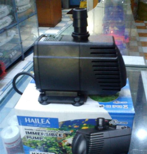 kapasitor pompa air terlalu besar mengganti kapasitor pompa air dengan yang lebih besar 28 images juragan lele tasik pompa air