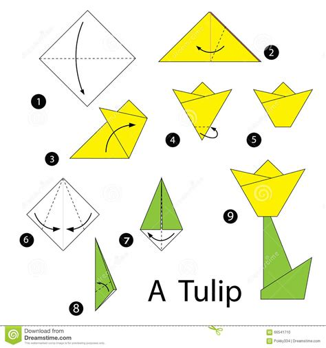 How To Make A Paper Tulip Step By Step - step by step how to make origami tulip stock