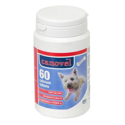 calcium supplements for dogs buy hatchwell canavel calcium tablets for dogs cats 60 tablets