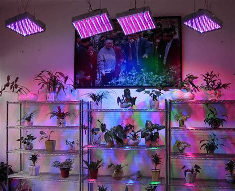 best indoor garden system indoor gardening best light system hydroponics systems co