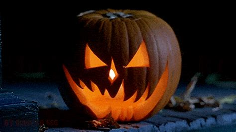 pumpkin carving gifs search find  share gfycat gifs