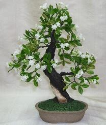artificial flowering water jasmine bonsai tree