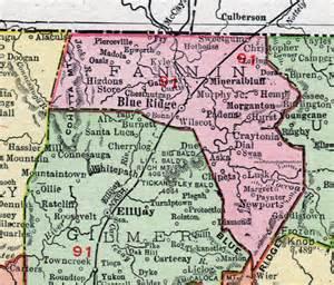 fannin county 1911 map rand mcnally blue