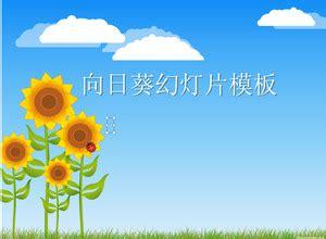 Farmasi Geser Gambar langit biru dan awan putih di bawah bunga matahari