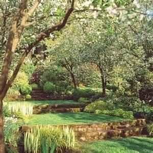 terraced backyard for a garden with a slight slope when you still