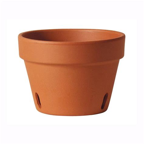 home depot clay pots southern patio 6 in clay orchid pot tc0612op the home depot