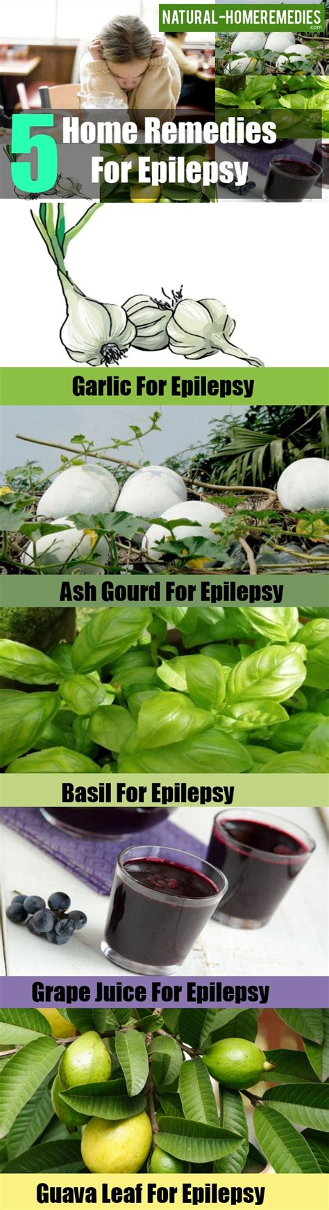 home remedies for seizures 5 home remedies for epilepsy treatments cure for epilepsy home