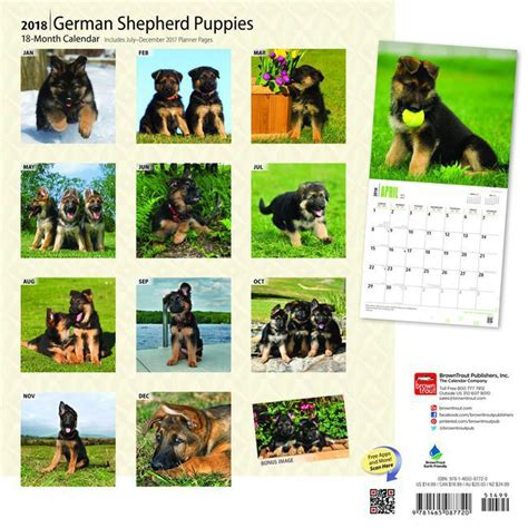 Calendrier Chien 2018 Calendrier Berger Allemand 2018
