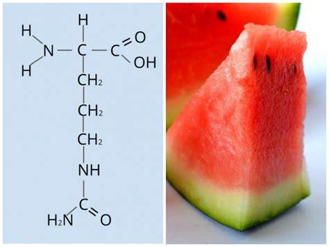 citrullina alimenti citrullina dove si trova propriet 224 effetti