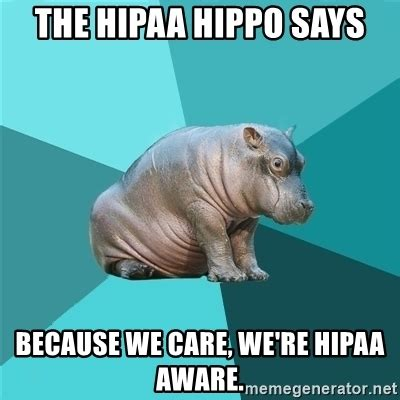 Hippo Memes - the hipaa hippo says because we care we re hipaa aware