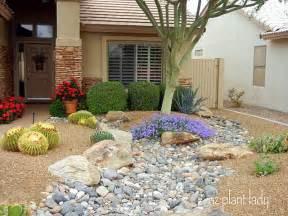 Desert landscaping ideas for front yard modern medicine cabinet island