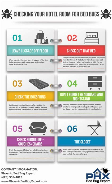 how to check for bed bugs in a hotel infrogra me global infographic community