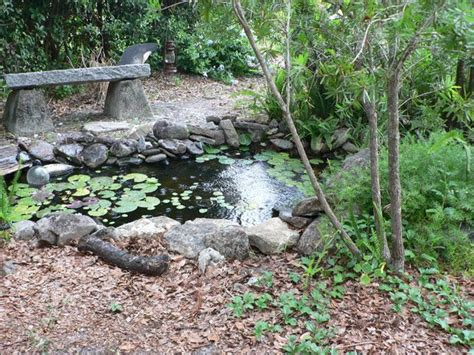 29 best images about garden ponds on backyard