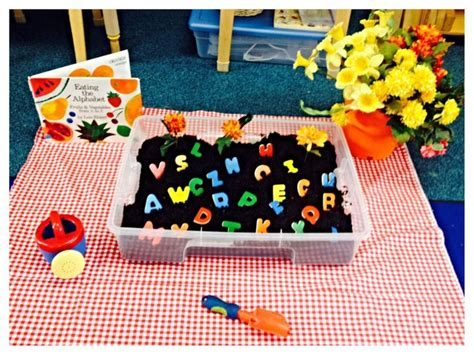 Garden Projects For Kindergarten 17 Best Images About Healthy Food Unit On The