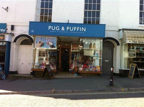 the pug shop greeting cards found no where else picture of pug and puffin lyme regis tripadvisor