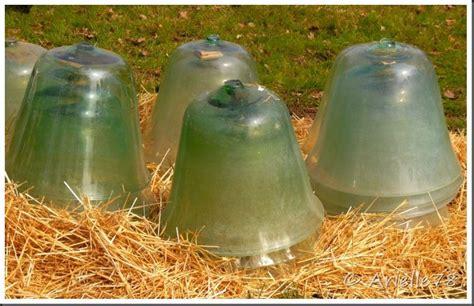 cloche en verre jardin