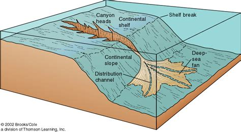 Continental Shelf Slope And Rise by Topography Of Earth S Basin