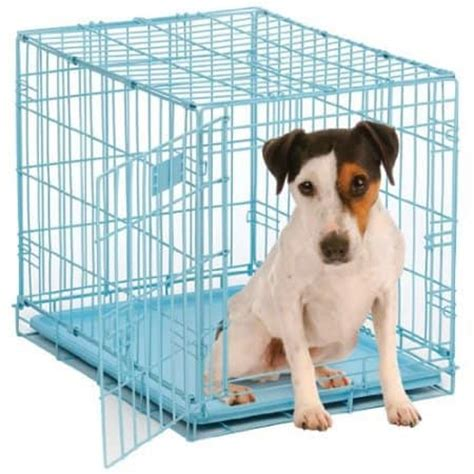 how to crate potty a puppy house puppy on crate how to potty a puppy l breeds picture