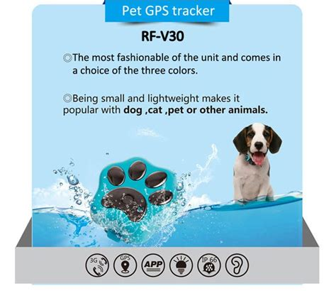 Tagg Pet Tracker Phone Number Ip66 Waterproof Pet Device Made In China Gps Tracker