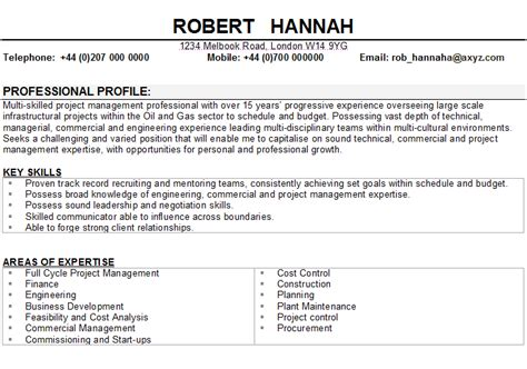 Job Resume Examples Template by Project Manager Cv Sample
