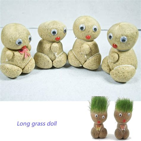 china doll plant for sale popular doll grass buy cheap doll grass lots from china
