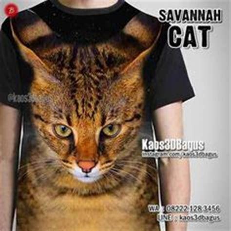 Kaos3d Cat loading kaos kittens