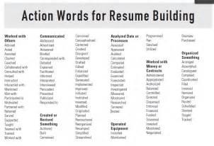 resume word dictionary bestsellerbookdb