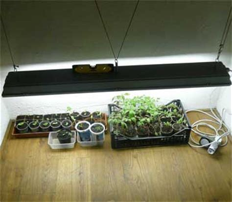 grow lights indoor gardening home depot indoor grow lights home yankeephotos bloguez com