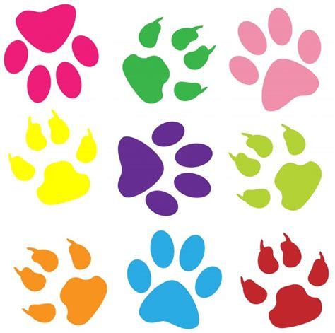 Paw Prints Colorful Background Free Stock Photo Public Colorful Prints